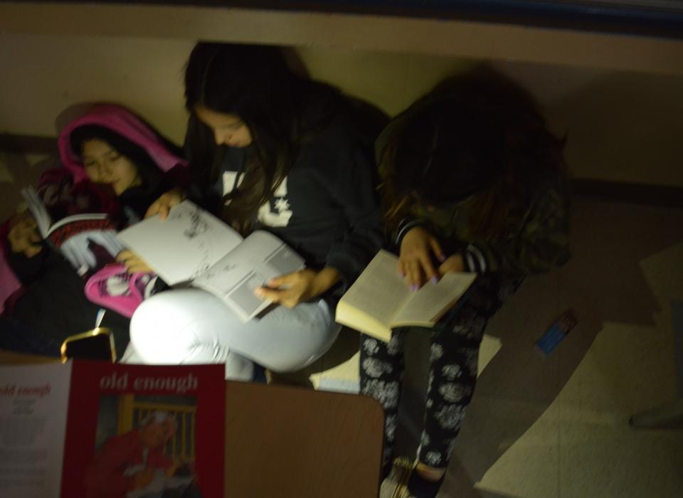 Reading in the Dark (11)
